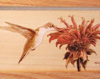 Female Ruby Throated Hummingbird on Beebalm Woodburning Art