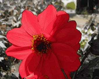 Red dahlia painterly photograph instant download jpg fine art