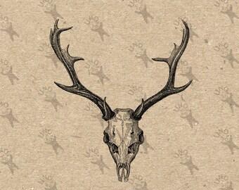 Hirsch Skull Horns Vintage Hirsch Hirsch Geweih Bild Instant Download Bild Digital bedruckbare Clipart Grafik Sackleinen Transferpapier HQ300dpi