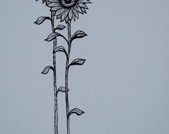 Sunflower: Spring - fine art print ink drawing