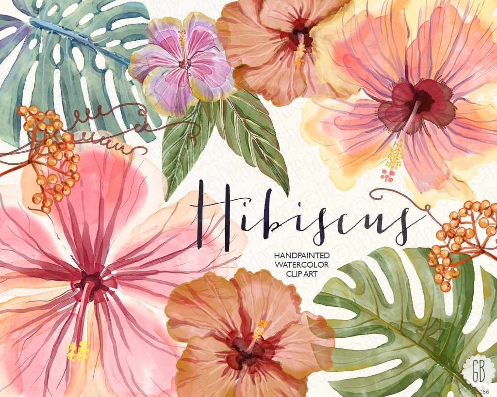 Watercolor hibiscus flower tropical leaves jungle plants zoom izmirmasajfo