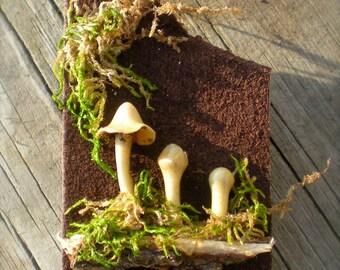 Mushroom Brooch