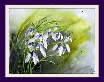 Painting - Flowers - Original watercolor - Snowdrop - Size 30x40 cm