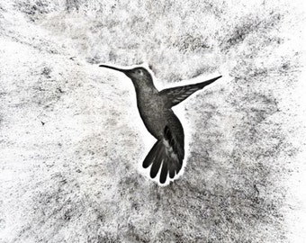 Hummingbird pencil drawing print, Original drawing print, Pencil and charcoal bird, Black and white Colibrì, A2 print highly detailed