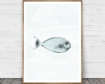 Fish Print, Fish Photo, Aquarium, Printable Wall Art Gift, Relaxing Art, Black and White Fish Print, Nursery Decor, Ocean Photography Art