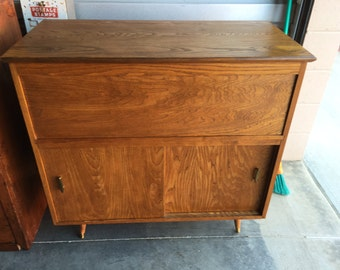 Mid-Century Modern Cabinet _ Record Stoarge