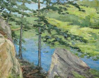 Trail at Vernay Lake