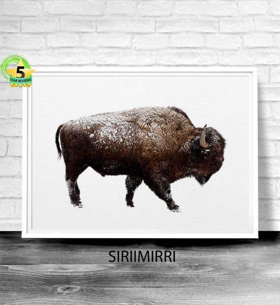 Impression de buffalo bison art mural bison imprimer buffalo - Photo de bison a imprimer ...