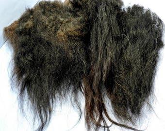Spinning Fiber Icelandic Long Wool Locks Black Brown 1 oz for Hand Spun Art Yarn