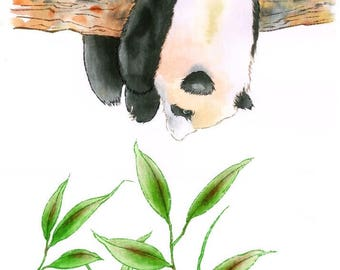 Hanging panda reaching for bamboo