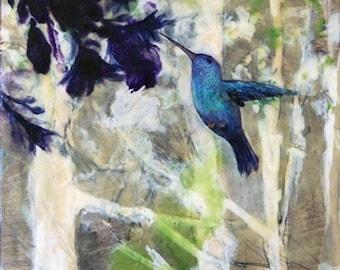 Hummingbird Haze
