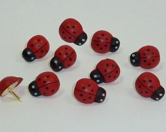 Decorative Push Pins, Ladybird Drawing Pins, Cork Board Pins, Thumbtacks, Pin Board Pins, Ladybug Push Pins, Teacher Gift