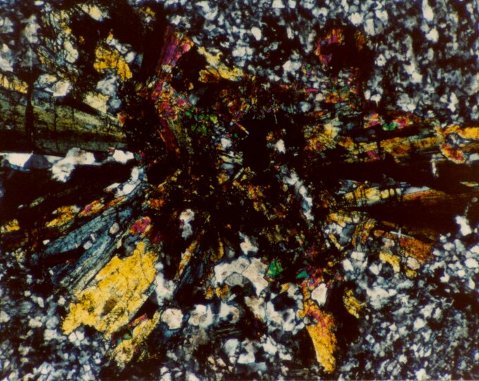 Mineral Thin Section Photography - Digital Prints on Canvas - Epidote and Quartz