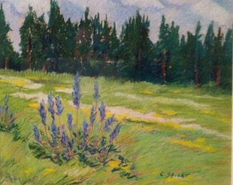 Original landscape pastel Field in June