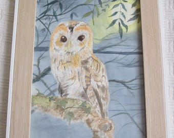 Tawny Owl - a framed original watercolour by Gwen Blyth