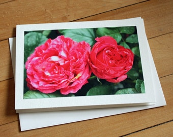 Roses Greeting Card, Blank Greeting Card, Note Card, Any Occasion, Birthday Card, Envelope, Photography, Photograph, Stationary, Red, Girl