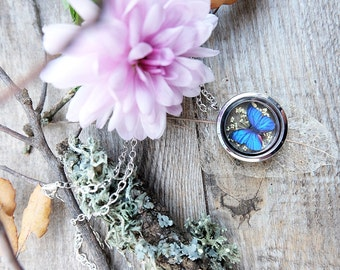 Blue butterfly necklace, locket necklace, terrarium necklace, gift for woman, dried flower charm, botanical jewelry, dainty necklace