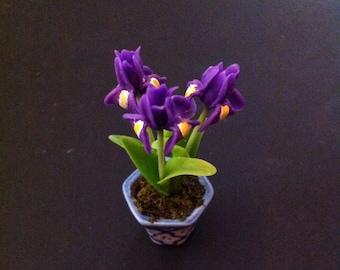 Irises, 2 Inch Miniature Potted Bouquet, Looks Like Live Flowers