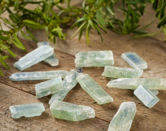 1 GREEN KYANITE - Some w/ Blue Stripe - Raw Kyanite Stone, Kyanite Crystal, Blue Kyanite, Chakra Stone, Healing Stone, Kyanite Jewelry E0011