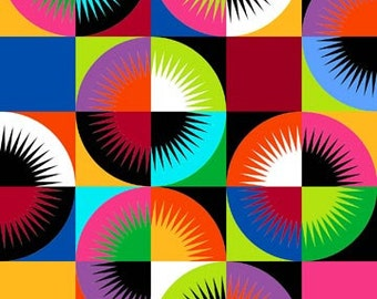 Sunbursts Rainbow Colorworks Concepts Northcott Fabric Panel