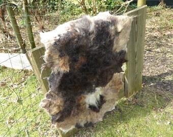 Hand gevilte kleed van Ouessant schapenwol, viltvacht, bruin, wit, beige, kastanjebruin, gemeleerd, zacht kleedje, ter decoratie, op de bank