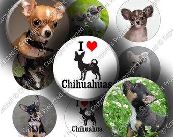 "Digital Bottle Cap Collage Sheet - Love Chihuahuas (966) - 1"" Digital Bottle Cap Images"