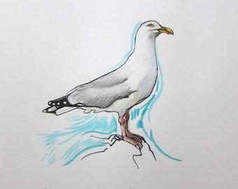 Herring gull original drawing