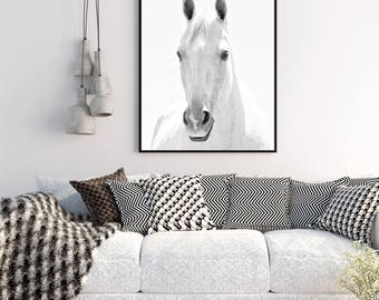 White Horse Photograph in Black and White | White Background Animal Art | Vertical Wall Art | Physical Print