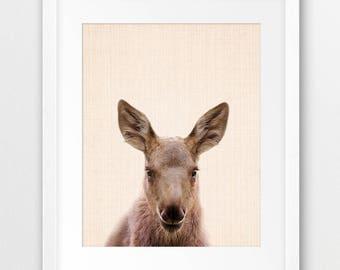 Moose Print, Woodlands Animal Wall Art, Baby Moose Photography, Nursery Animal Decor, Forest Animal Print, Kids Room Decor, Printable Art
