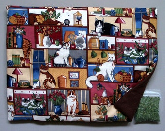 Catnip Mat and Catnip  Housecats Refillable Reversible