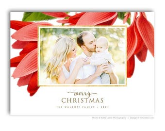 Christmas Photo Card Template - Vintage Floral - Photoshop Template for Photographers - 7x5 - MODERN VINTAGE - 1674