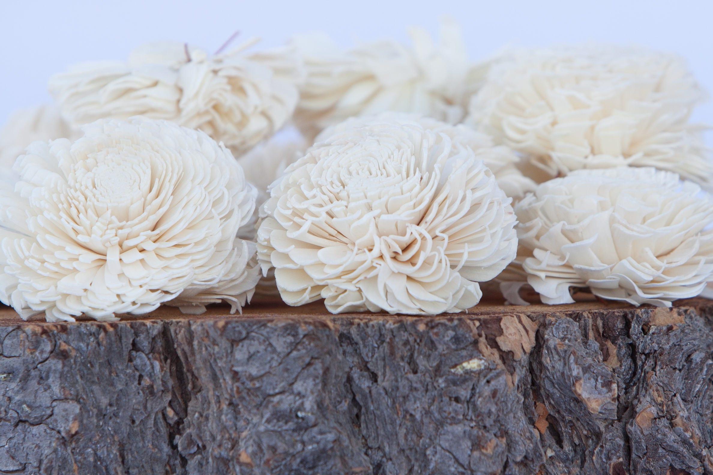 Large chorki sola flowers set of 10 sola flowers wood sola 1 izmirmasajfo