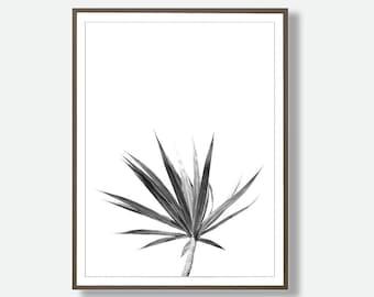Tropical Digital Download , Leaf Print, Leaf Instant Download, Minimalist Black and White Print, Tropical Leaf, Feliss-Art