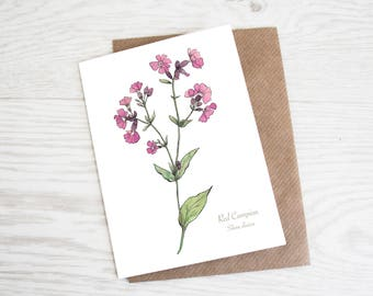 Red Campion, A6 Botanical Wildflower Greeting Card