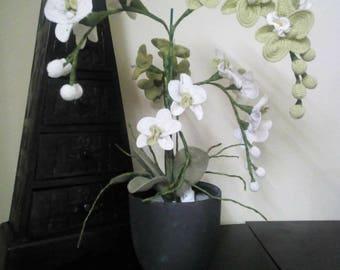 Plant Orchid Crochet