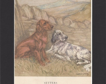 Setters Vintage Dog Print George Vernon Stokes Original 1947 Drawing Mounted with Black Mat