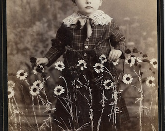Antique Cabinet Photo Boy among Daisies