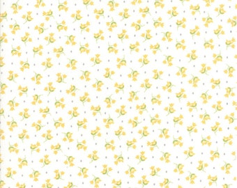 Pepper and Flax - Tulip in Eyelet White: sku 29043-11 cotton quilting fabric by Corey Yoder for Moda Fabrics