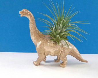 Repurposed Dinosaur Air Planter, Dinoplanter, Air Plant, Recycled, Upcycled, Handmade Dinoplanter, Dinosaur Decor,Made By Mod.
