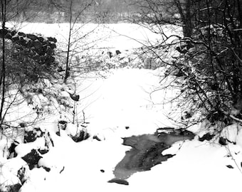 Whitnall Park Dam Black and White photo print 5x7 matted for 8x10