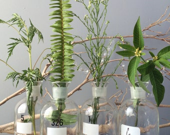 GLASS BOTTLES...used glass chemistry Wheaton bottles - glass supplies - flower arrangements vases bud vase - wedding party