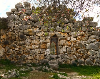 The Narrow Gate: Photography Print Art Print Wall Decor Home Decor Mycenae Greece Ruins Fortress Wall Rock Ancient Tree Flowers Door Scene