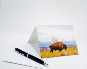 The Bison Notecard