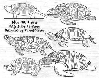 Black and White Turtle Clipart Sea Turtle Outlines Birthday Party Coloring Book Images Tortoise Graphics Blackline Animal Coloring Clip Art