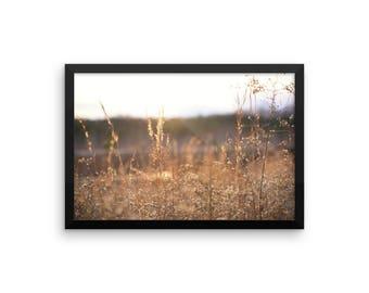 Grass - Warm - Nature - Outdoors - Framed Print