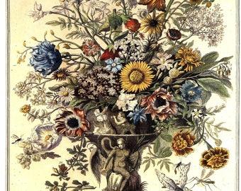 November Flowers Art Print -12 MONTHS of FLOWERS- Winterthur Museum- 18th Century Botanical Illustration - baby wedding gift idea- 14 x 19