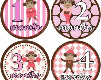 FREE GIFT Monthly Baby Stickers Baby Month Stickers Baby Girl Month Stickers Monthly Bodysuit Stickers Monthly Milestone Sticker Baby Shower