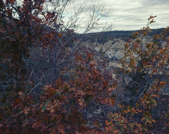 Fine Art Framed Photograph,  Landscape Photography, Nature, Medium Format Photography