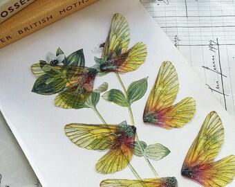 NEW Set of three small yellow rainbow faerie wings