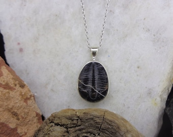 Trilobite etsy elrathia trilobite pendant solid silver frame fossil necklace water bug utah mozeypictures Image collections
